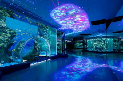 の とじ ま 水族館
